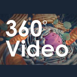 360 gradi video produzione service